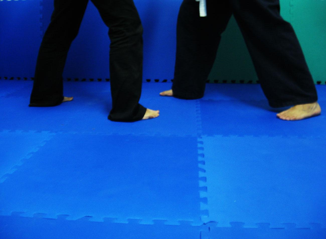 piso para practicar Artes marciales